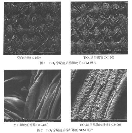 棉纤维有数级微观结构